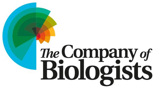 CoB_logo1573173801.jpg